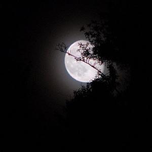 Di malam sepi di sepertiga malam